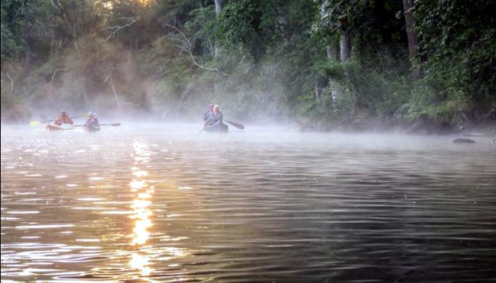 Paddlers arose in the dark and wondered for a moment why they were doing so. They planned to greet the sun's early light on the Ipswich River.  The first sights that thrilled the paddlers were patches of fog no more than head high on the water. It is called sea smoke on the ocean.